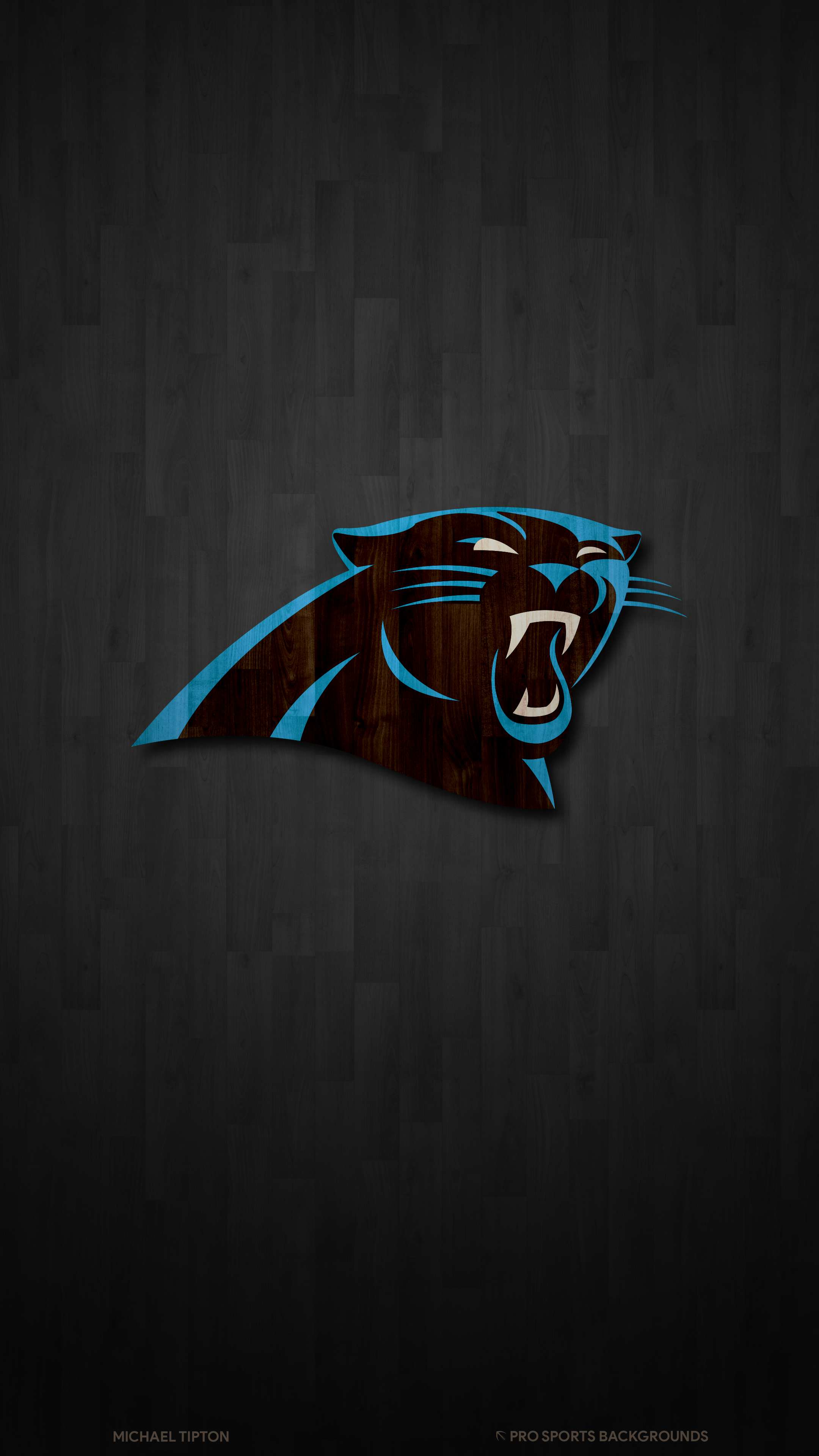 2019 Carolina Panthers Wallpapers Pro Sports Backgrounds
